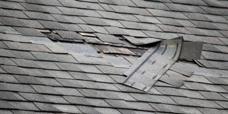 What to Do if You Need Roof Repair
